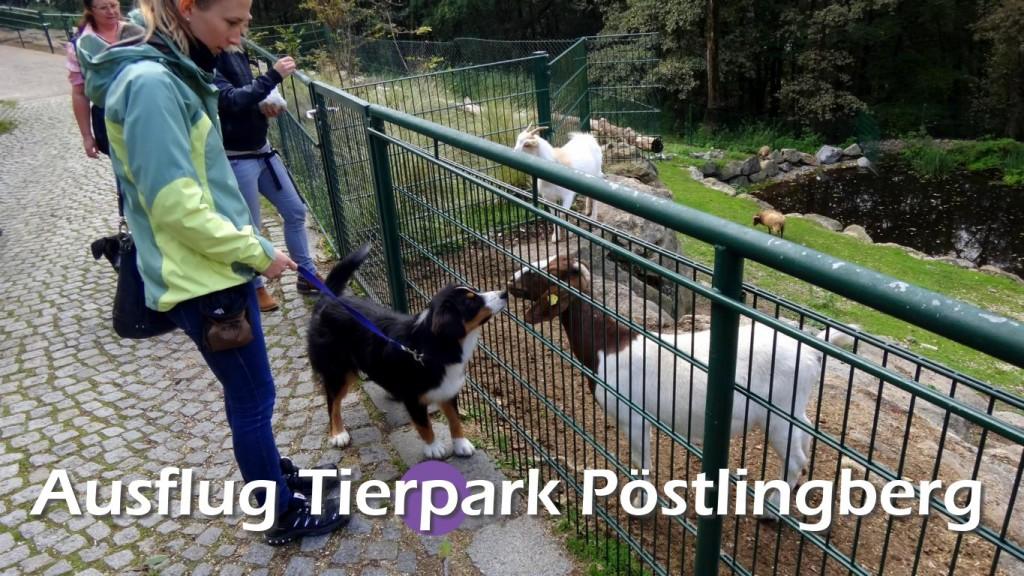 Tierpark 04-10-2014 (33)