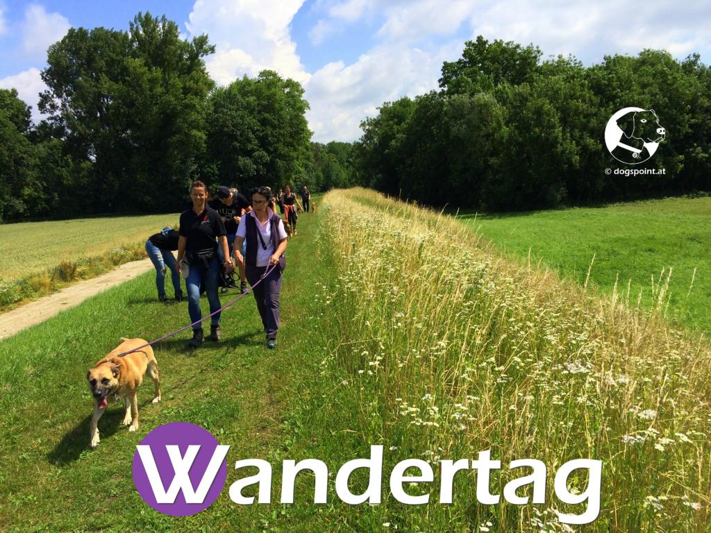 Wandertag 28-06-2015 (24)